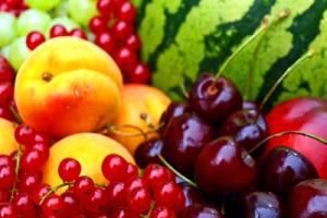 Mittel gegen obstfliegen for Mittel gegen fruchtfliegen in blumenerde