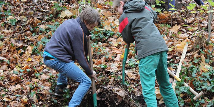 Schüler werden Baumpaten und sparen 123 Tonnen CO2