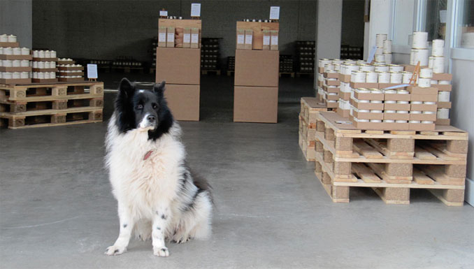 Eddie wacht über die Ware im Lager von Bellomondo bei Mannheim