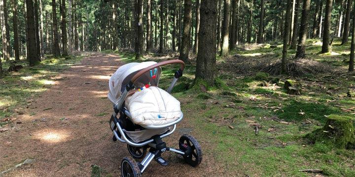 Kinderwagen Test:Nova von Maxi-Cosi