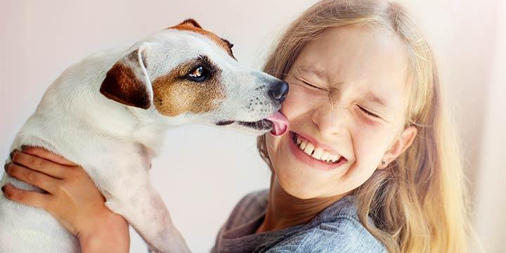 Wenn sich Kinder Haustiere wünschen