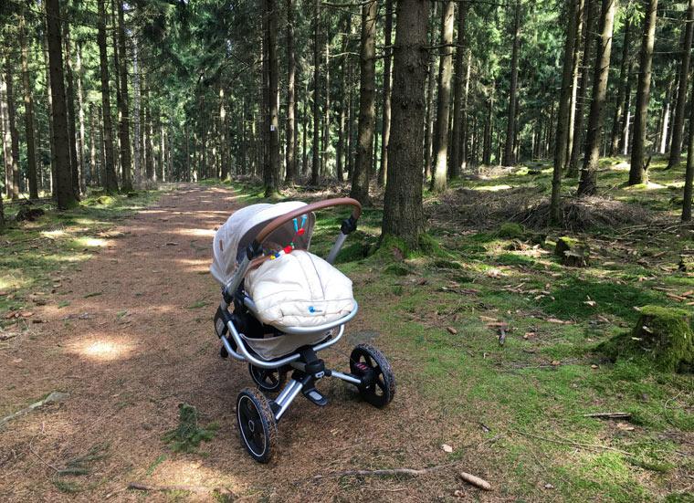 Maxi-Cosi im Wald