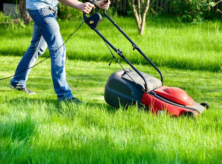 Rasen schneiden und wässern