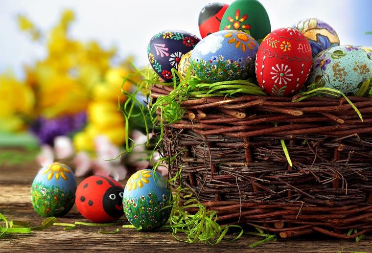Frische Eier im Osternest