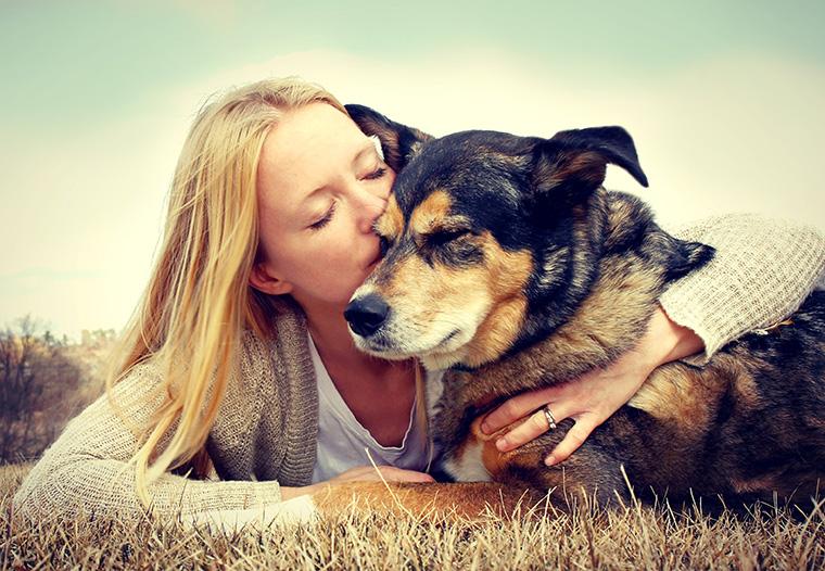 Die Verantwortung für das Wohl der Tiere liegt anscheinend nur beim Verbraucher.