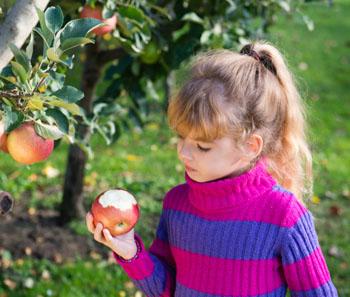 Gesunde Ernährung für Ihr Kind. Wissenswertes und nützliche Tipps © fotokostic (iStock)