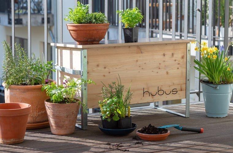 Hubus - Mit Bioabfall und Würmern für ein grünes Stadtleben