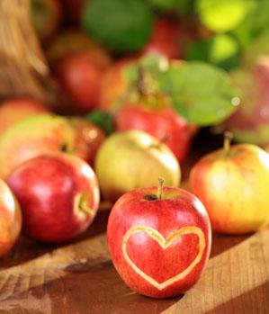 Das große Apfel-Special