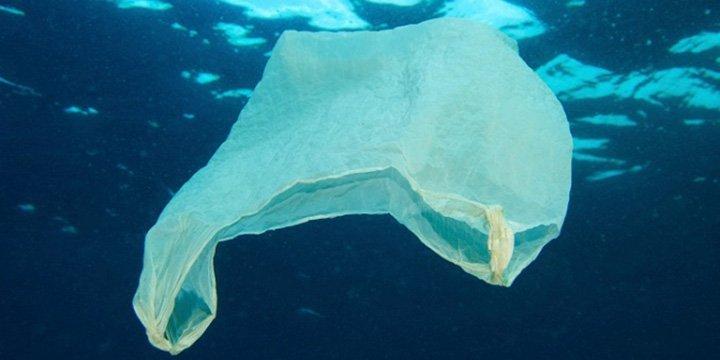 Müllfreier Nordostatlantik: OSPAR Aktionsplan bekämpft Müll im Meer