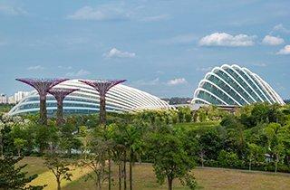 Urbane Zukunft Special - grüner leben