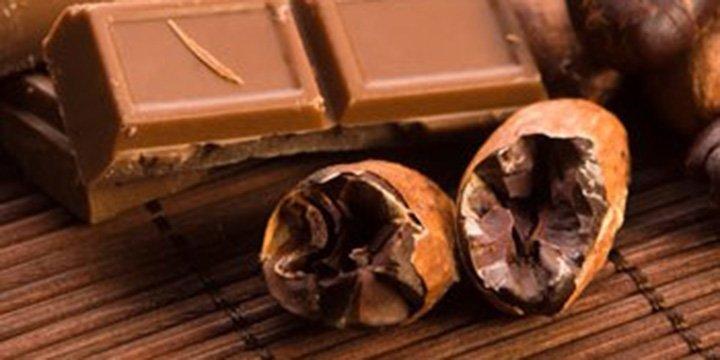 Fairtrade-Schokolode: Nachhaltig Naschen mit Verstand