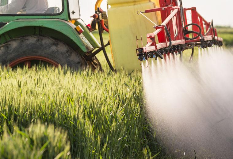 Wie die Landwirtschaft Tierarten bedroht