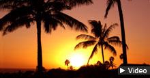 Lebenstraum auf Hawaii