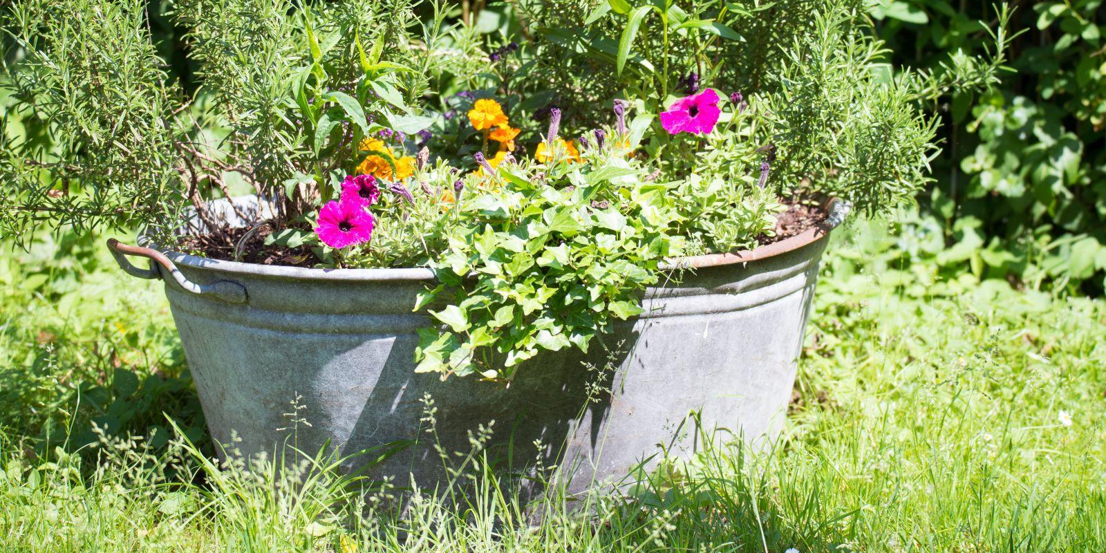 Zink im Garten - Comeback eines Klassikers