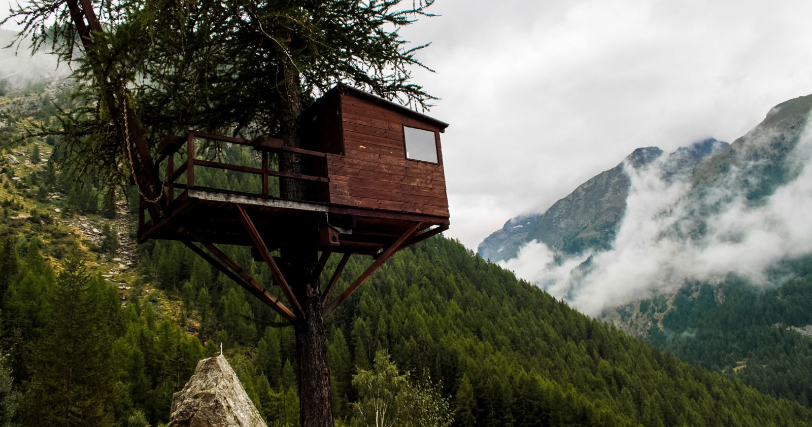 Baumhäuser in der Natur