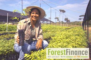 ForestFinance - Wir machen Wald!