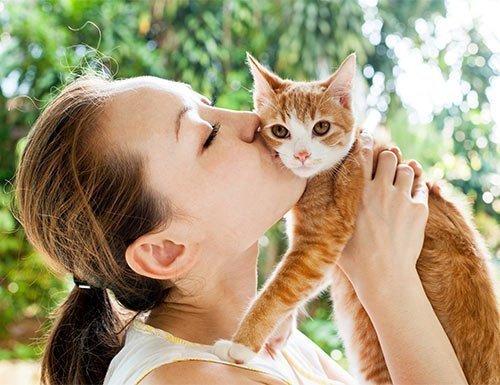 Katzenhalterin küsst ihre Katze
