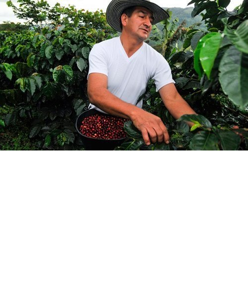 Nespresso Nachhaltigkeit