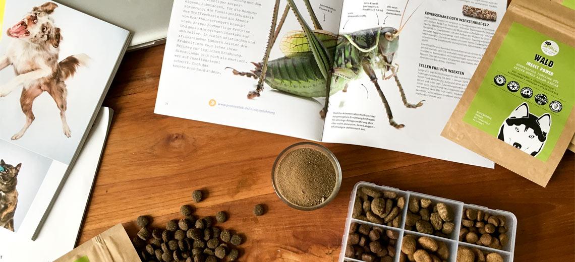 Véronique Glorieux & Gema Aparicio – Insektenfutter für Haustiere
